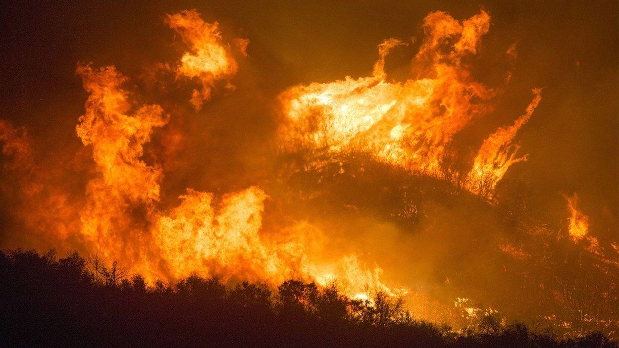 Afbeelding van Brandweer waarschuwt voor risico natuurbrand door droogte
