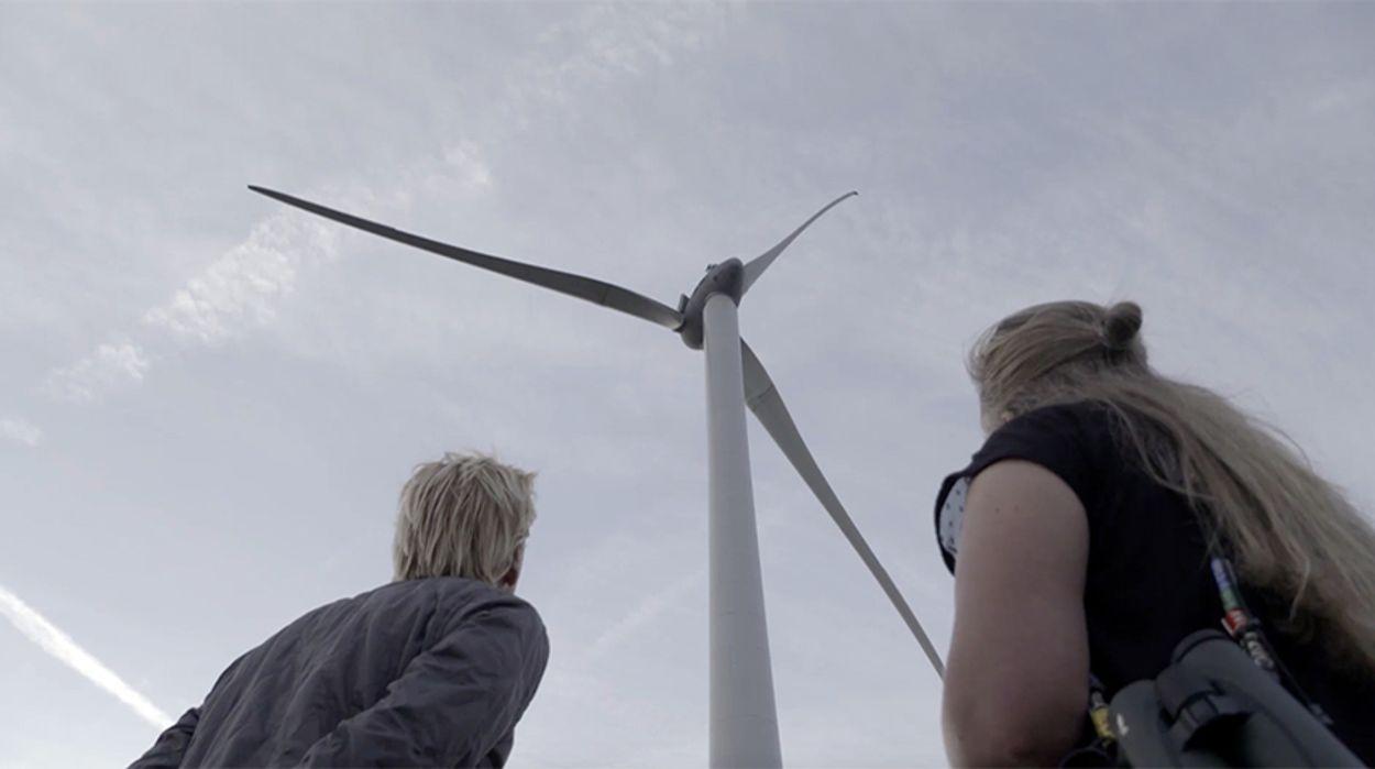 Afbeelding van Windmolen stopt voor zeearend