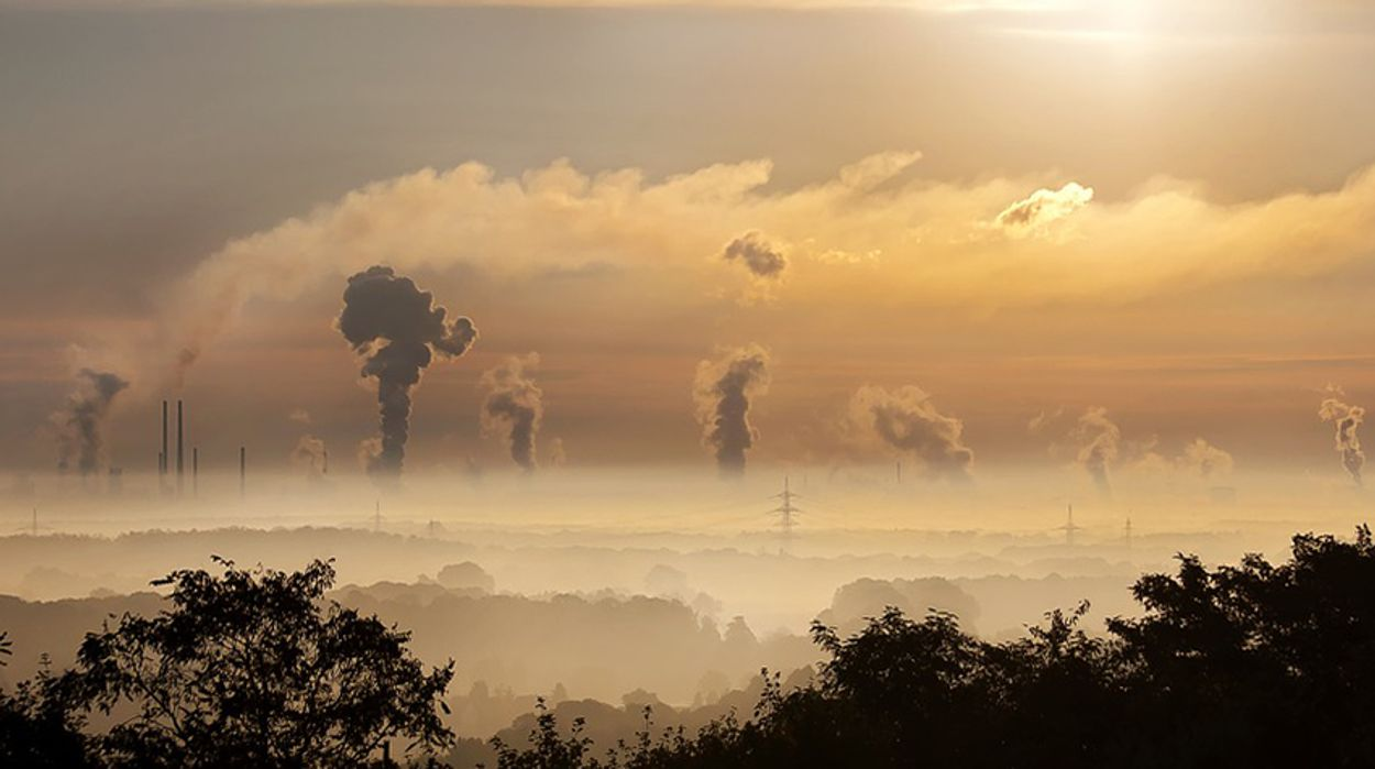 Afbeelding van 'Geen gaswinning bij natuur vanwege stikstof'