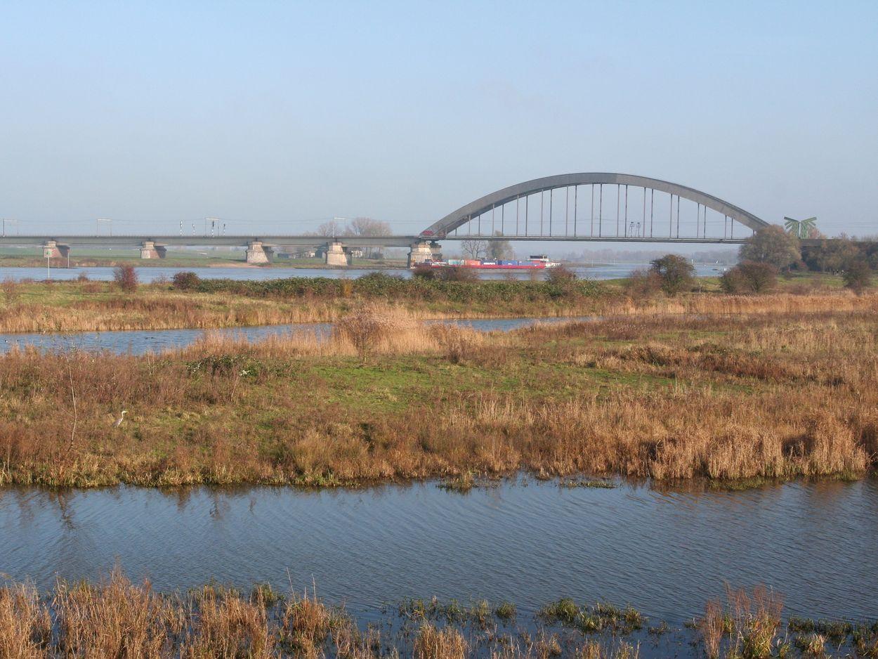 Afbeelding van Watersnood in Culemborg, slaaptrek, slibbeheer in de Eems-Dollard, fenolijn en andere radio-onderwerpen