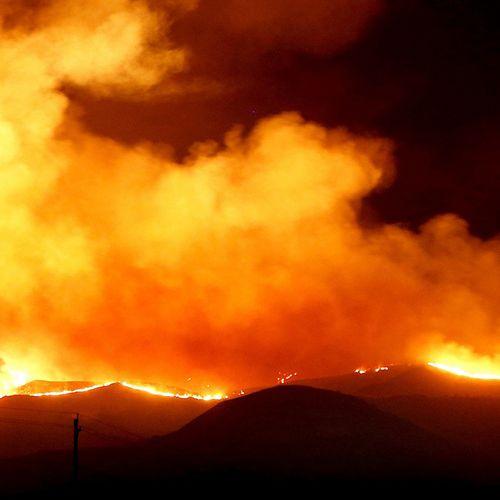 Afbeelding van Grote klimaatbetogingen in Australië na bosbranden