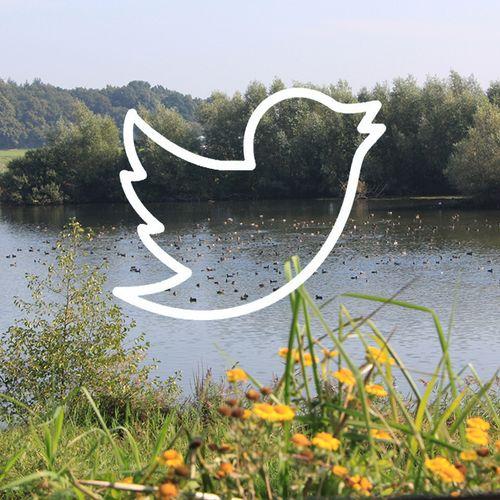 Afbeelding van Nederland tweet massaal voor behoud natuur