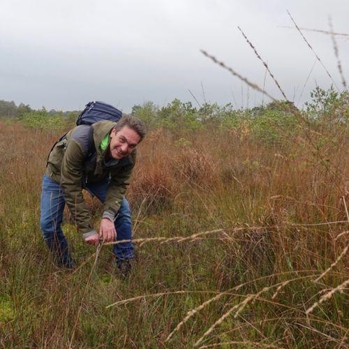 Afbeelding van Nog steeds te droog in Oost-Nederland