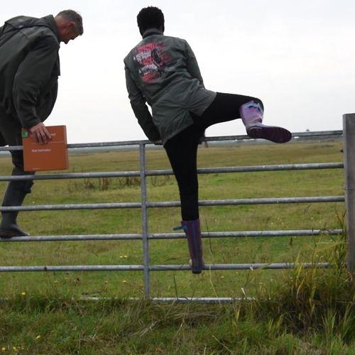 Afbeelding van Hekjes hoppen in Lauwersmeer