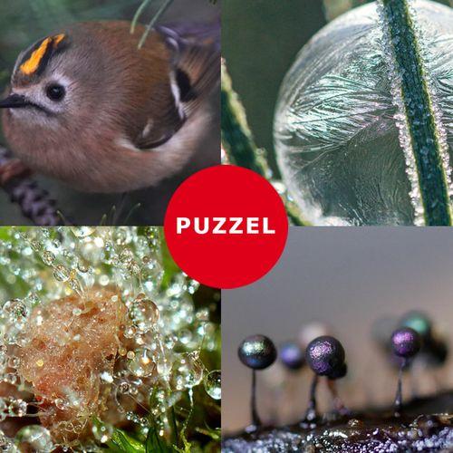 Afbeelding van Speel de natuurpuzzel en win een prijs
